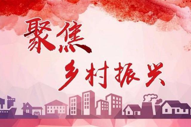"""云南澄江:培优育强""""领头雁"""" 筑牢乡村振兴基石"""
