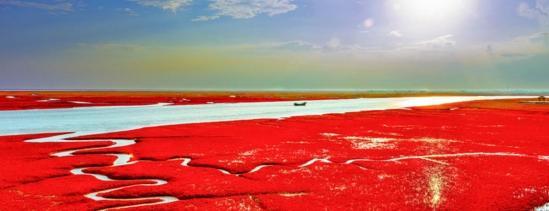 脉脉一水间 田可心_红海滩——世界红色海岸线_新浪河北教育_新浪河北