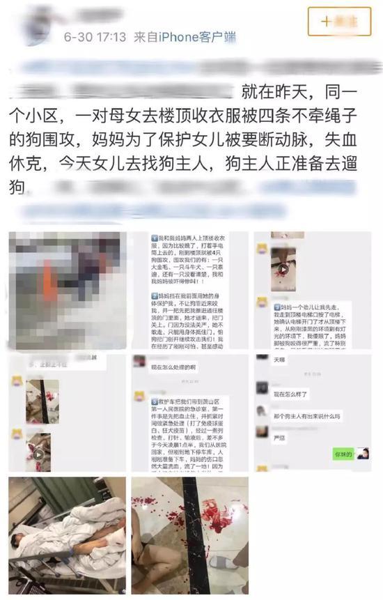 杭州母女遭狗圍攻 咬人的斗牛犬已經被執行注射死亡